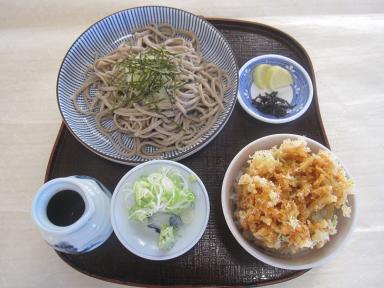 料理長のオススメ。桜海老のミニ天丼セット。
